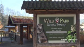 Wildpark Schloss Tambach
