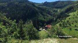 Gebirge Höfe-Weg