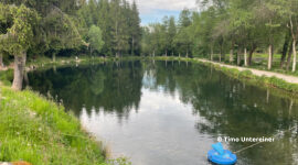 Angelpark Letscher